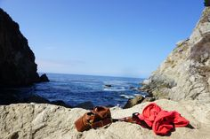 Pacific Coast Highway: Where to Stop from San Francisco to San Luis Obispo