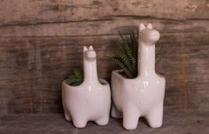 VERDE CACTUS Macetas y utilitarios de cerámica con forma de animales y casas. http://charliechoices.com/verde-cactus/