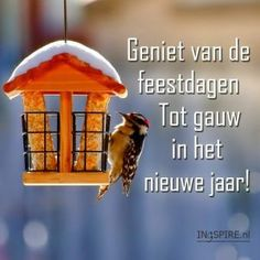 Geniet van de feestdagen en tot gauw.. New Year Greetings, Christmas Greetings, Merry Christmas And Happy New Year, Vintage Christmas, National Holidays, Holidays And Events, Cool Words, Beautiful Pictures, Humor