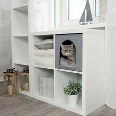 L'Abri douillet est un abri en forme de cube en feutre pour chat. Il est pliable et possède un coussin. Grace à sa forme et sa flexibilité il peut être rangé entre les étagères.