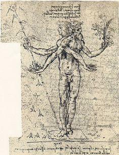 Category:Allegorical drawings by Leonardo da Vinci - Wikimedia Commons