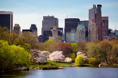 New York City in the Spring