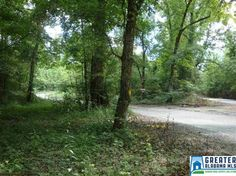 3.41+/- Acres with much potential subject to Rezoning. Currently zoned Residential. Part of Spring Creek Sub.