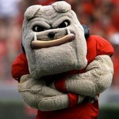 1000 images about dawg nation on pinterest georgia bulldogs