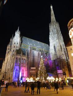 Window Shopping in Vienna - Vienna, Cathedral, Windows, Shopping, Window, Cathedrals, Ramen, Ely Cathedral