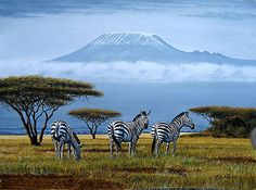 """Zebras at the foot of Mount Kilimanjaro"""" Posters by Mutan 