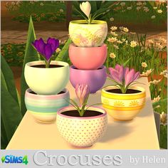 Crocuses flowers and pot at Helen Sims via Sims 4 Updates