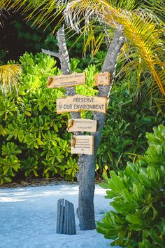 """""""Kick of your shoes and get closer to nature."""" Wohlfühlen im Einklang mit der Natur– auch dieses 5-Sterne Resort derCoco Collectionsteht fürabsolute Exklusivitätundökologisc…"""