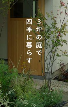 Interior Garden, Private Garden, Green Flowers, Flower Beds, Backyard Landscaping, Exterior, Outdoor Structures, House Design, Patio