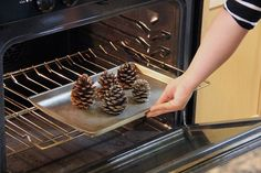 Cinnamon infused pine cones. Use an old cookie sheet for the job because sap on pine cones will also melt in the oven.