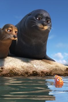 """FINDING DORY – Marlin and Nemo get guidance from a pair of lazy sea lions in an effort to catch up with Dory. Featuring Idris Elba as the voice of Fluke and Dominic West as the voice of Rudder, """"Finding Dory"""" opens on June Disney Dory And Marlin, Finding Dory Sea Lion, Disney Finding Dory, Disney Marvel, Sailor Moon, Carl Y Ellie, Cannes, Thor, Finding Nemo"""