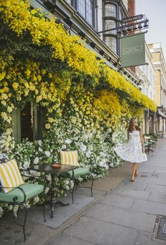 The Londoner » Cocktails in Chelsea