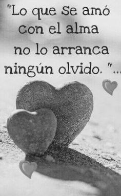 〽️Lo que se amo con el alma, no lo arranca ningún olvido...