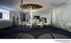 Office Design - Another tree another office..