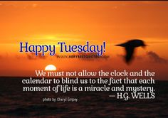 Happy Tuesday!!!