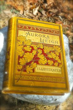 english robert browning and aurora leigh Aurora leigh (1856), elizabeth barrett browning's epic novel in blank verse, tells the story of the making of a woman poet, exploring 'the woman question', art and its relation to politics and social oppression.