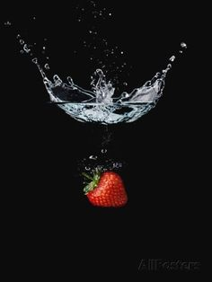 Strawberry in Water Photographic Print by John Smith at AllPosters.com