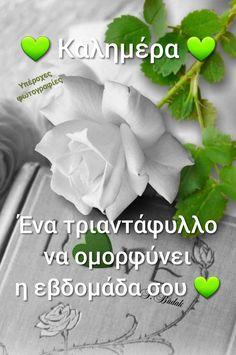 Beautiful Soul, Good Morning, Character Design, Romantic, Anastasia, Herbs, Food, Buen Dia, Bonjour