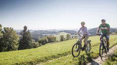 Bicycle, Vehicles, Bike Trails, Waiting, Bicycling, Viajes, Bike, Bicycle Kick, Bicycles