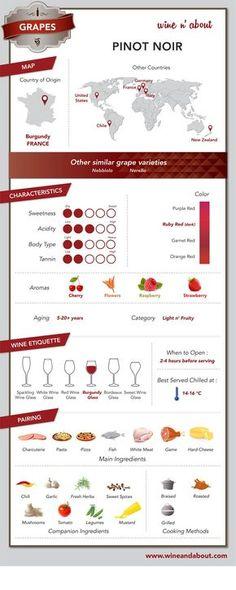Grapes: Pinot Noir #infografía