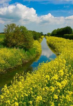 Louth Canal, Lincolnshire, England