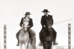 Sergio e Giuseppe con Mescal e Quisir due esemplari puro sangue Lusitani