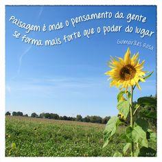 Seja um turista sustentável e viaje pelo Brasil.