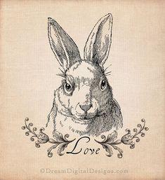 Bunny Rabbit Printable Image - Vintage Illustration Digital Sheet  - INSTANT DOWNLOAD No.279
