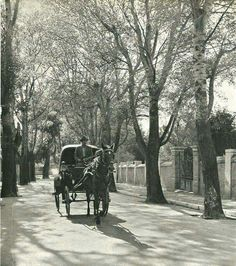 Kifisiá neighborhood, Kifisiá was and still is one of the most expensive northern suburbs of Athens, Greece. Vintage Pictures, Old Pictures, Old Photos, Greece History, Greece Pictures, Old Greek, Greece Photography, Horse And Buggy, Modern History