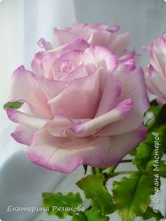 Флористика искусственная Лепка Розы из полимерной глины Глина Фарфор холодный фото 2