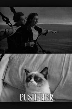 OMG I love grumpy cats attitude