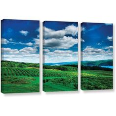 ArtWall Steve Ainsworth Vineyard And Lake 3-Piece Gallery-wrapped Canvas Set, Size: 24 x 36, Green