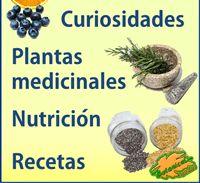 Plant Magazine of Botanical-online September 2017 Diabetic Desserts, Diabetic Recipes, Cooking Recipes, Diabetes Tattoo Type 1, Lupus Diet, Diabetes Awareness, School Snacks, Balanced Diet, Vitamins And Minerals
