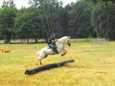 Cowboy Challenge Fantastic obstacle!