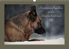 Faszinierende Augenblicke mit dem Deutschen Schäferhund Wandkalender 2017 DIN A2