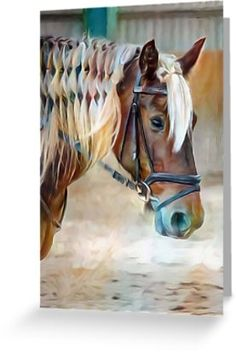 All occasion greeting card for horse lovers.