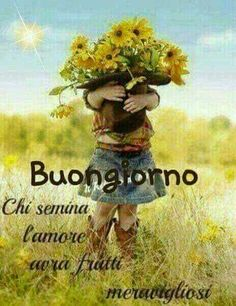chicco_volante@libero.it Good Morning Good Night, Day For Night, Italian Memes, Teddy Bear, Animals, Cristiani, Dolce, Blessings, Boards