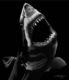Inspired by artwork from Robert Longo Shark Tooth Tattoo, Shark Tattoos, Shark Pictures, Shark Photos, Chicano Art Tattoos, Body Art Tattoos, Shark Background, Siren Tattoo, Monster Shark