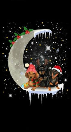 My Favorite Things – Clearstempel Set Otterly Love You Christmas Animals, Christmas Pictures, Winter Christmas, Vintage Christmas, Christmas Dachshund, Dachshund Art, Dachshund Puppies, Weenie Dogs, Daschund
