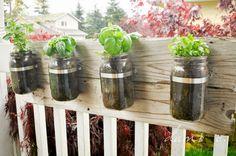 Mason jar Herb Planters