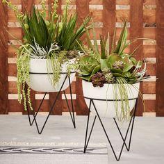 Planter Envy – West Elm Iris Planter + Chevron Stand