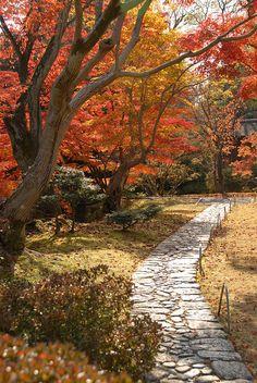 Katsura Imperial Villa and Gardens, Kyoto by np, via Flickr