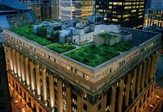 Beautiful Green Rooftop Garden of Chicago City Hall