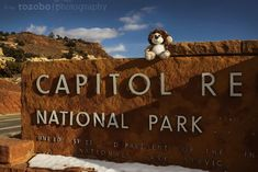 Nationalparks, Roadtrip, Cherokee, Winter, Wanderlust, Motivation, Usa, Abandoned, Snow