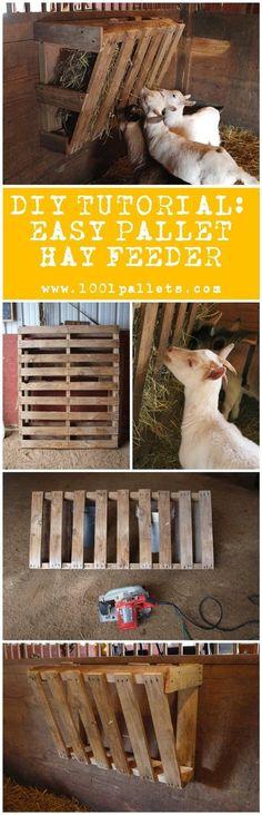 Diy Tutorial: Easy Pallet Hay Feeder | 1001 Pallets ideas ! | Scoop.it