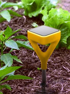 Edyn aims to help gardeners keep tabs on their plants' health with a sensor and accompanying app—a water valve that controls irrigation is also shipping later this summer. The products were designed by Yves Behar of fuseproject. Below, Edyn CEO and founder Jason Aramburu shares his thoughts on the target demographic for intelligent garden tools and what the future of the smart tech holds.