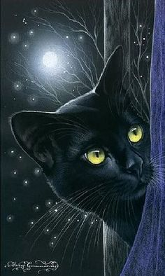 Black Cat Art - 'Inspired by cats' - Russian artist Irina Garmashova (Garmashova-Cawton) - Colors: Black and Blue, touch of yellow I Love Cats, Crazy Cats, Cool Cats, Gatos Cats, Photo Chat, Cat Drawing, Beautiful Cats, Pretty Cats, Cat Art
