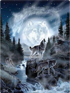 Silberpfeil 'Call of the wild'. - spirit, moon, wolves, mystical, animals More Victorian Garden Wolf Tattoos, Anime Wolf, Beautiful Creatures, Animals Beautiful, Indian Wolf, Mystical Animals, Wolf Artwork, Wolf Painting, Fantasy Wolf