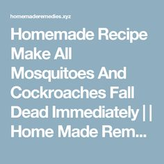 Homemade Recipe Make All Mosquitoes And Cockroaches Fall Dead Immediately     Home Made Remedies