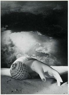 Dora Maar, Untitled (Hand-shell) 1934